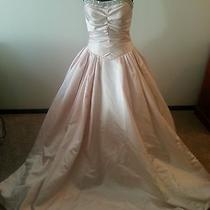 Never Worn Blush Ball-Gown Size 10 Photo