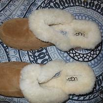 Never Worn Ugg Clogs Size 8..... Photo