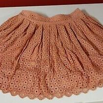 new348.00 Fossil Floral Lace Leather Mini Skirt Size 4 Photo