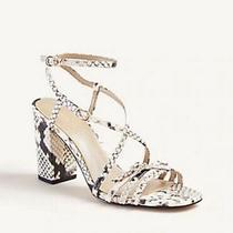 New Ann Taylor Luciana Snake Print Leather Block Heel Sandals Size 8.5 M Photo