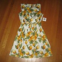 New Anne Klein Chelsea in Yellow Lemon Print Belted Fit & Flare Dress 14 Nwt Photo