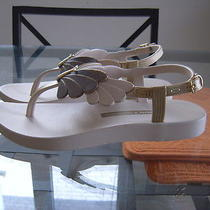 New Authentic Ipanema Gisele Bundchen Sunset Beige/bronze Flip Flops Sandals Photo
