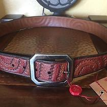 New Authentic True Religion Rainbow Etching Belt Brown Size 40 128 Photo