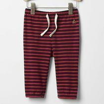 New Baby Gap Boys 0-3 Mos Brannan Bear Navy Blue Red Striped Cotton Pants Photo
