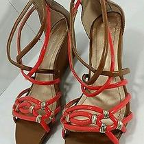 New Bcbg Bcbgeneration Vecelia Brown Red Wedge Sandal Strap Shoe Size 8.5 B Photo