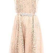 New Betsy & Adam Pink Blush Womens Size 6 Crochet-Lace Sheath Dress 199 065 Photo