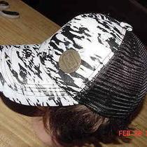 New Billabong Bw Zebra Adjustable Snapback Trucker Hat Cap Brass Logo Medallion Photo