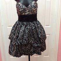 New Blush Prom Short Zebra Dress Sz8 Photo