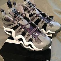 New Boys Adidas Crazy 8 Basketball Shoes Size 6y Photo