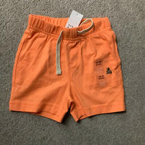 New Boys Baby Gap Orange Shorts Size 12-18 Months Photo
