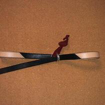 New Brighton Tan & Black  Sz Small  Belt C-Rings  Made in Usa Photo