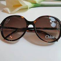 New Chloe Sunglasses Tortiose Co4 Cl2252 Auth Photo