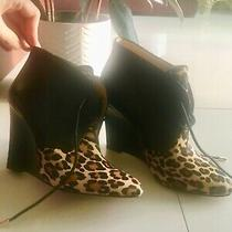 New Coach Black Leather/leopard Calf Hair Ankle Boots  Size 7 Photo