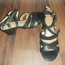 New Coach Black Leather Terri Block Heels 5.5 Photo
