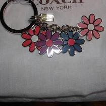 New Coach F69937 Pretty Spring Floral Sunflowers Key Fob Keyfob Key Ring Nwt 58 Photo