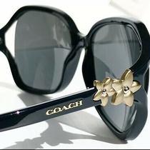 New Coach Hc8233 Black W Matte Gold Flower Grey Lens Women's Sunglass W Case Photo