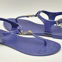 New Coach Piccadilly Jelly Pvc Signature C-Logo Thong Sandal Slide Flat Blue 6 Photo