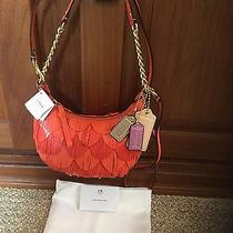 New Coach Poppy Leather Fringe Bag 22484 Coral Orange Small Purse Handbag Chain Photo