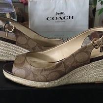 New Coach Sandals Size 8 175 Photo