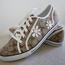 New Coach Sneakers With Daisy Flowers  Size 11  Photo