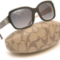 New Coach Sunglasses Model 8001 Emma 5053t3 Photo