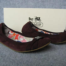 New Coach Women's Dwyer Suede Leather Ballet Flats Shoes 6 Nib Authentic Plum Photo