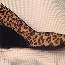 New Cole Haan Lainey Leopard Cow Fur & Black Patent Leather Wedge Size 9b Photo