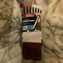 New Dickies Steel Toe Thermal Cotton Crew Socks - 2 Pair Size 6-12 - Maroon/gray Photo