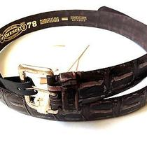 New Diesel Mens 36 38 40 Bottur Brown Cow Leather Embossed Studded Belt 100 Cm  Photo