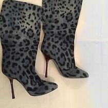 New Dolce & Gabbana Blue Leopard Boots 38 8 Rare Photo