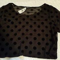 New Express Medium Black Croptop Photo