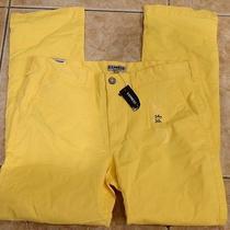 New Express Yellow Stretch Cotton Photographer Straight Leg Pants 34