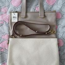 New Fossil Bag With Tags Photo