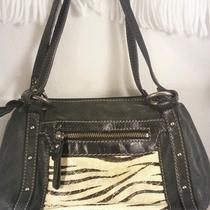 New Fossil Black Animal Print Front Leather Purse Handbag With Hardware Accents Photo