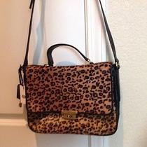 New Fossil Cheetah Handbag Photo