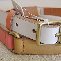 New Fossil Skinny Belt Colorblock Keeper Leather Size L Cream Tan Coral Bt4206p Photo