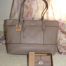 New Fossil Taupe Leather Hunter Shopper Handbag & Maddox Multi Wallet - Reg 223 Photo