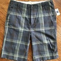 New Gap Kids Size 14 Husky Boys 100% Cotton Plaid Dressy Summer Shorts Grey Photo
