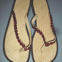 New Gap Weave Flip Flops Women's Sandals Size 10 Photo