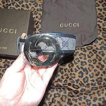 New Gucci Belt Photo