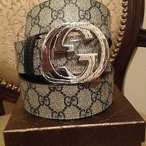 New Gucci Belt Authentic Beige and Blue 100cm Fits 34-36  Photo