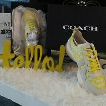 New in Box - 250 Coach Citysole Runner Sneaker Shoe in Yellow/white - Size 7.5 Photo