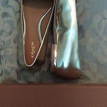 New in Box Authentic Leather Coach Platinum and Ginger Nubuck Flats Photo