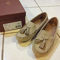 New in Box Coach Driving Moccasins Size 7.5   Photo