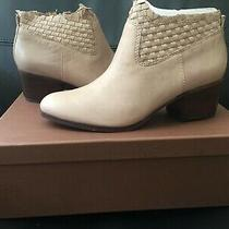 New in Box Coach Ryer Booties in Mink Grey Size 8  M Photo