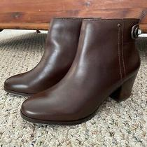 New in Box Coach Windsor Bootie Chestnut Size 6 Photo
