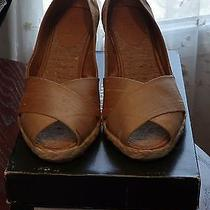 New in Box Ralph Lauren Cecilia Gold 11 Photo