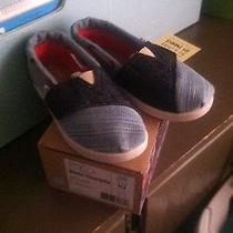 New in Box Toms Toddler 10 Photo
