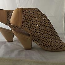 New Jeffrey Campbell Great Moments Tan Booties Premier Daisies Women Size 7.5  Photo