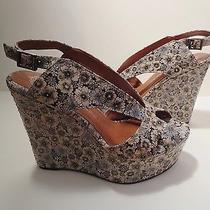 New Jeffrey Campbell Mariel Floral Wedge Sandals Cream Black Size 8 Nwob Shoes Photo